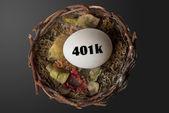 401K Nest Egg. — Stock Photo