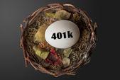 401K Nest Egg. — Stock Photo
