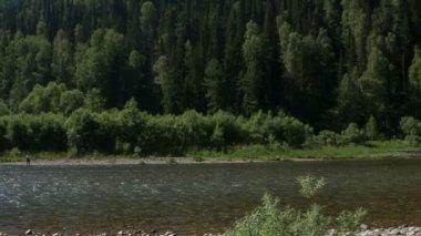 Mountain river — Stock Video