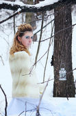 Portrait of beautiful girl in the winter forest — Stock Photo