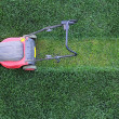 Grass cutter at the lawn — Stock Photo