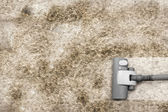 Vacuuming very dirty carpet — Stock Photo
