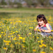 Girl gathering flowers in a meadow — Stock Photo