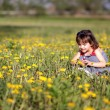 Stock Photo: Girl gathering flowers in a meadow