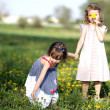 Stock Photo: Two girls play on the meadow