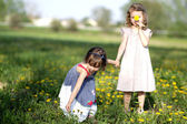 Two girls play on the meadow — Stock Photo
