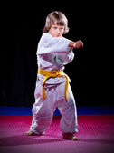 Little boy aikido fighter — Stockfoto