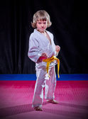Little boy aikido fighter — Stock Photo