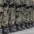 Polish army - military parade - Stock Photo