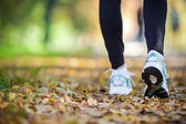 Walking in autumn scenery, exercise outdoors — Stock fotografie