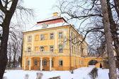Palácio de inverno — Foto Stock