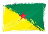 Grunge French Guiana flag — Stock Vector