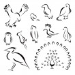 Set of birds — Stock Vector #45435333