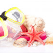 Stock Photo: Diving mask and shells