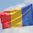 Flag of Romania — Stock Photo #35922629