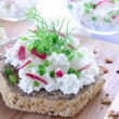 Sandwich with cottage cheese — Stock Photo #13617151