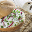 Sandwich with cottage cheese and radish — Stock Photo #22837220