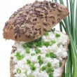 Sandwich with cottage cheese — Stock Photo #25499369