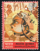 Maharaja yandé — Photo