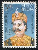 Lal Pratap Singh — Stock Photo