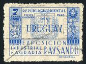 Paysandu arması — Stok fotoğraf