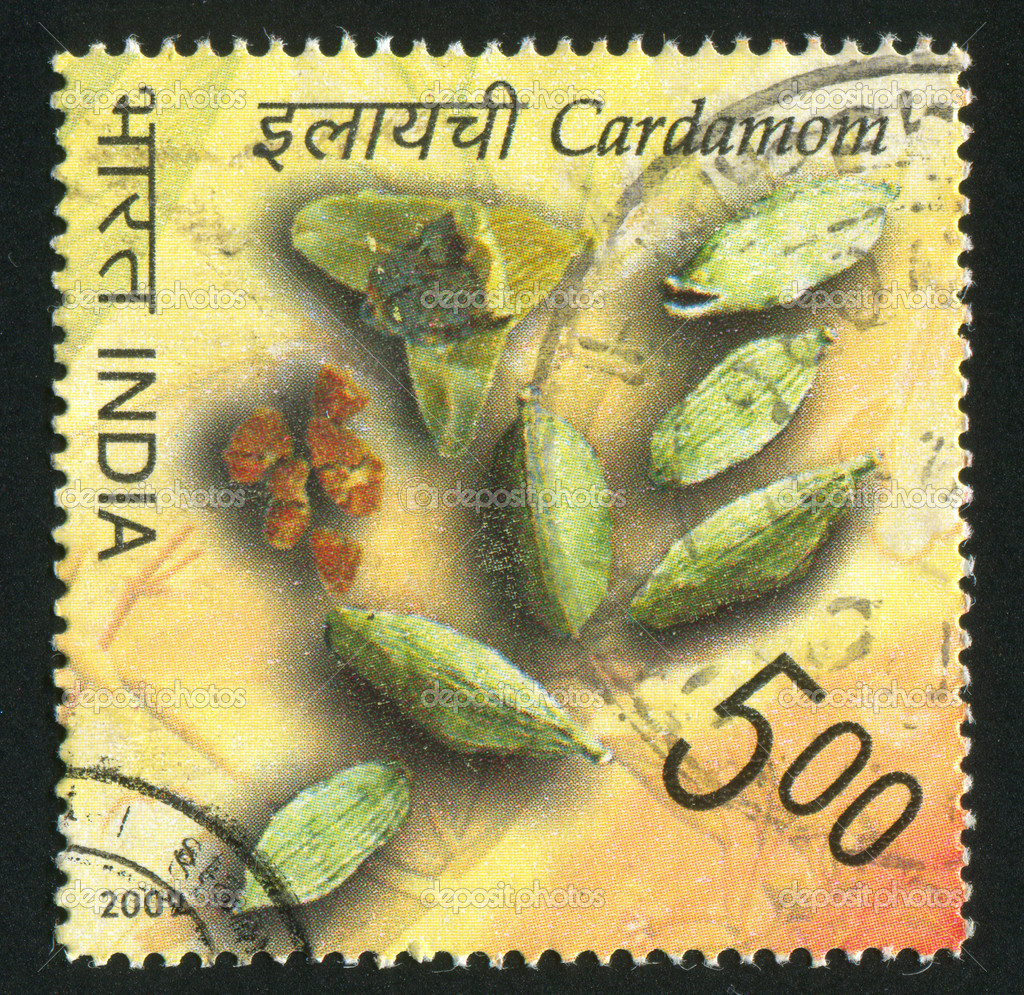INDIA - CIRCA 2009: stamp printed by India, shows cardamon, circa 2009 — Stock Photo #13192849