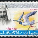 Постер, плакат: Sheik Rashid bin Humaid al Naimi