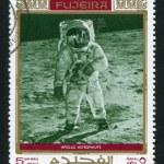 Постер, плакат: Astronaut Neil Alden Armstrong