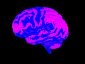 3 d の人間の脳 — ストック写真