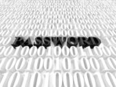 Password — Stock Photo