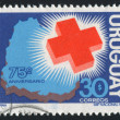Stock Photo: Red Cross and Map of Uruguay