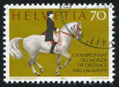 World Dressage Championship — Stock Photo