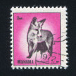 Stamp fox — Stock Photo