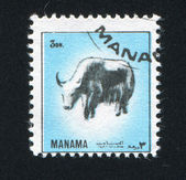 Stamp Yak — Foto de Stock
