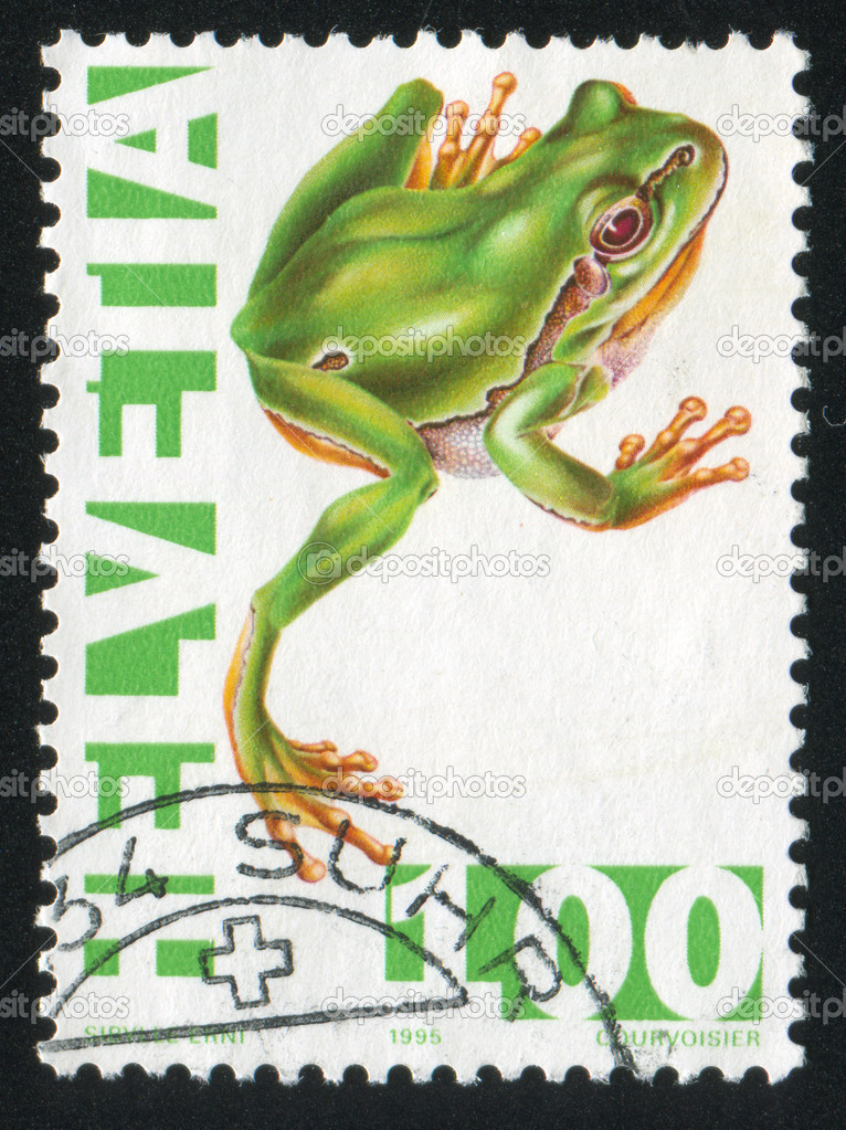 SWITZERLAND - CIRCA 1995: stamp printed by Switzerland, shows Green tree frog, circa 1995 — Stock Photo #19075953