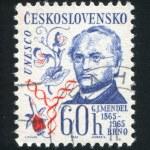 Постер, плакат: Gregor Johann Mendel
