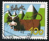 Cow in water by Patrice Killoffer — Stock Photo