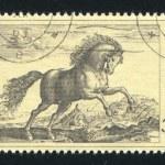 Постер, плакат: Prancing stallion by Hendrik Goltzius