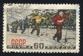 Skiers — ストック写真