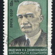 Stock Photo: Dzhavakhishvili