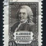 Постер, плакат: Carl von Linne