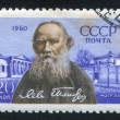 Leo Tolstoy — Stock Photo