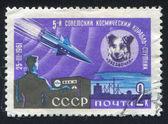 狗 zvezdochka 和人造卫星 — 图库照片