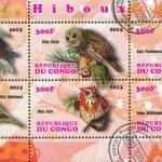 Owl bird — Stock Photo #28583399