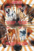 Stamp dog — Stock Photo