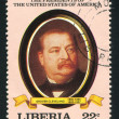 President of the United States Grover Cleveland — Stock fotografie