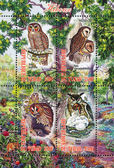Owl stamp — Stock Photo