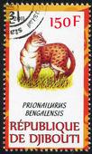 бенгальская кошка — Стоковое фото