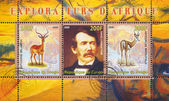 David Livingstone and impala — Stock Photo