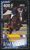Equestrianism — Stockfoto